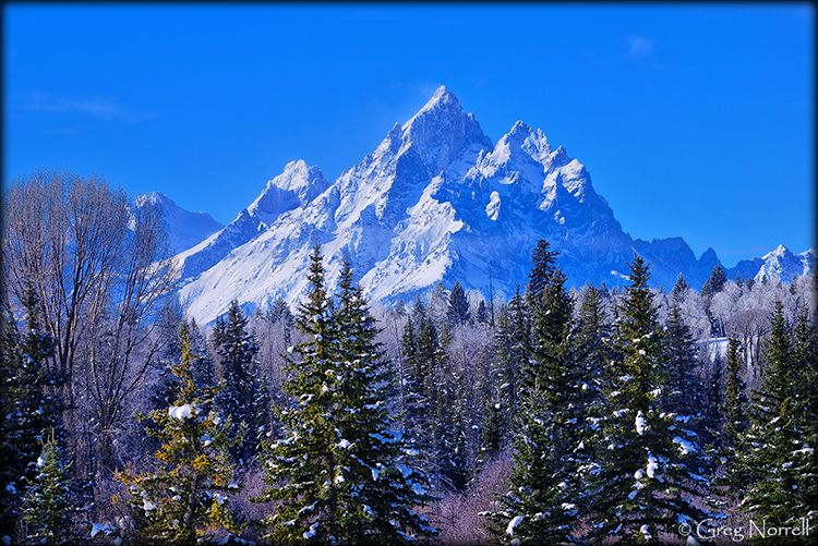 Teton Cathedral Group in WInter
